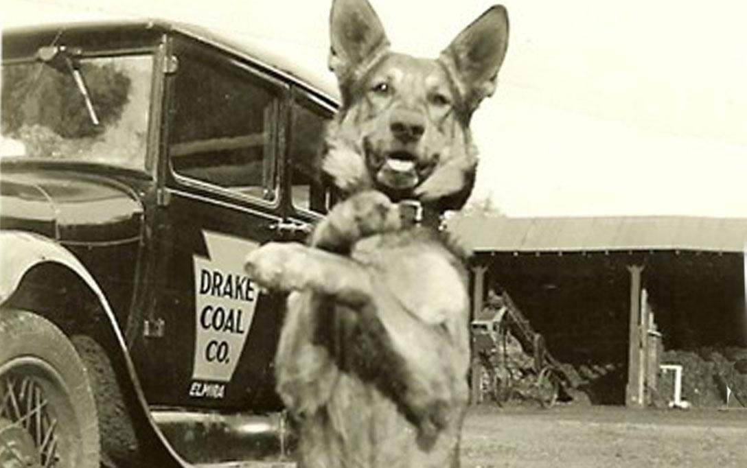 TruckPhotos-OldCoalTruck